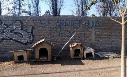 Profesora envía carta a alcalde de Talagante sobre escrito racista en la comuna